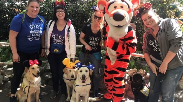 These service dogs visiting Disneyland will make your day 13