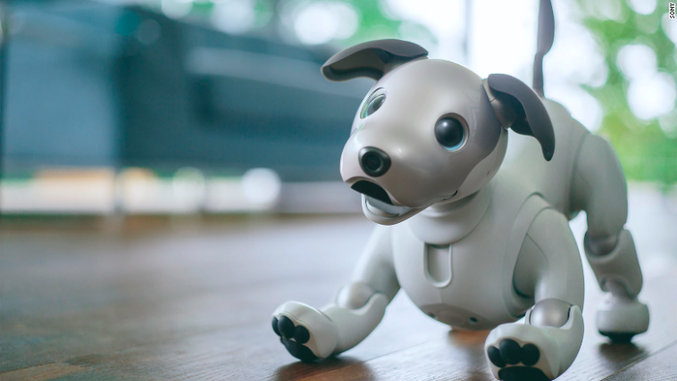 Sony plans to release its $2899 Aibo robot puppy in the U.S. 12