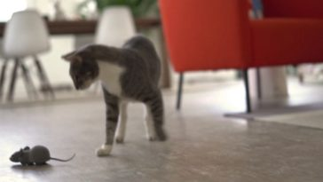 Your cat will go crazy for this app-controlled RC mouse 16