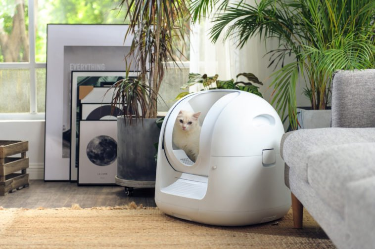 This futuristic litter box cleans itself and monitors your cat's health 16