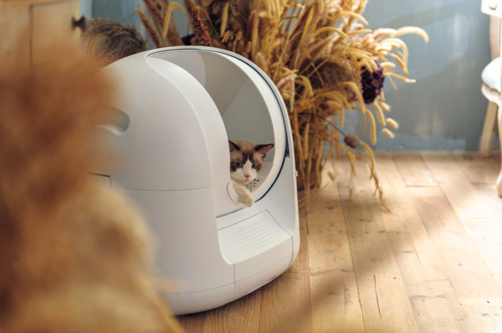 This futuristic litter box cleans itself and monitors your cat's health 13