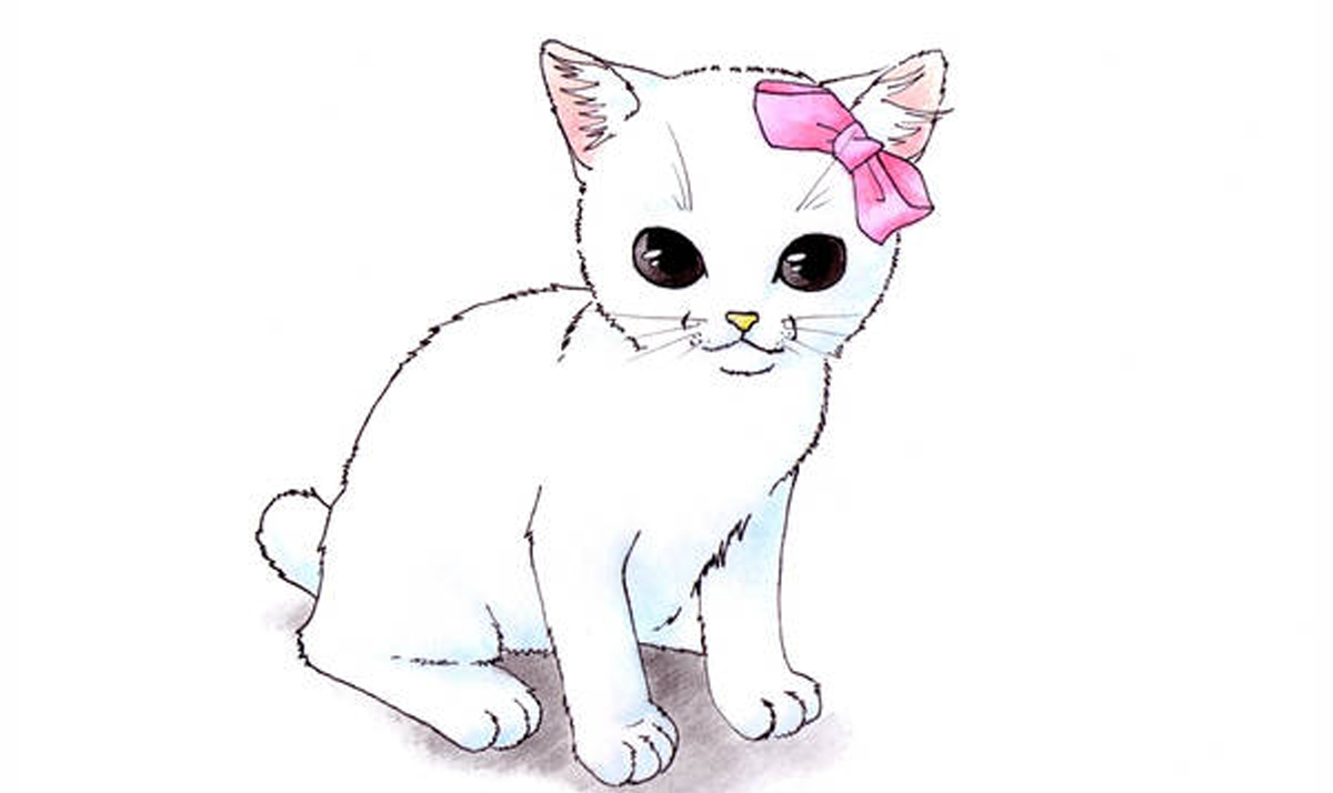 Hello Kitty as a real cat