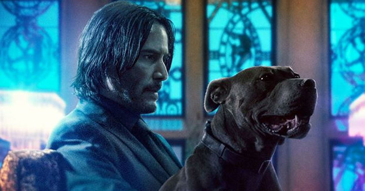 John Wick and his pit bull