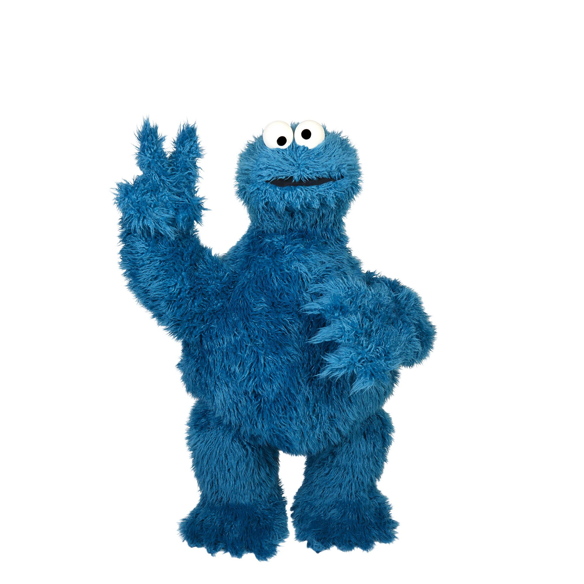 HASLAB Cookie Monster replica