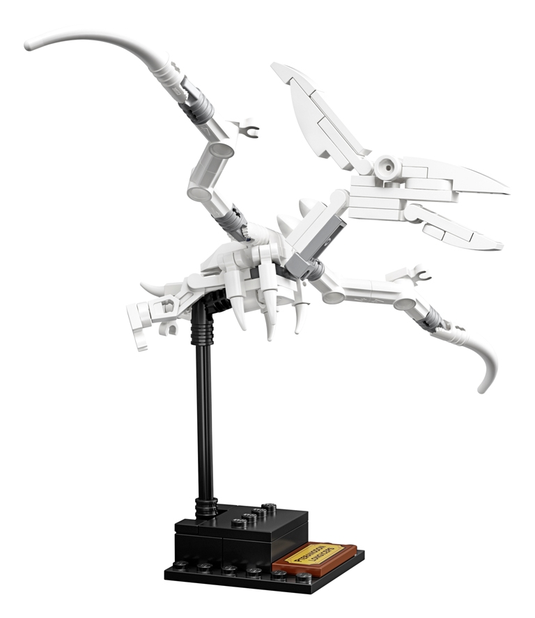 21320 Side 01 01 - The LEGO Ideas Dinosaur Fossils set is perfect for natural history enthusiasts