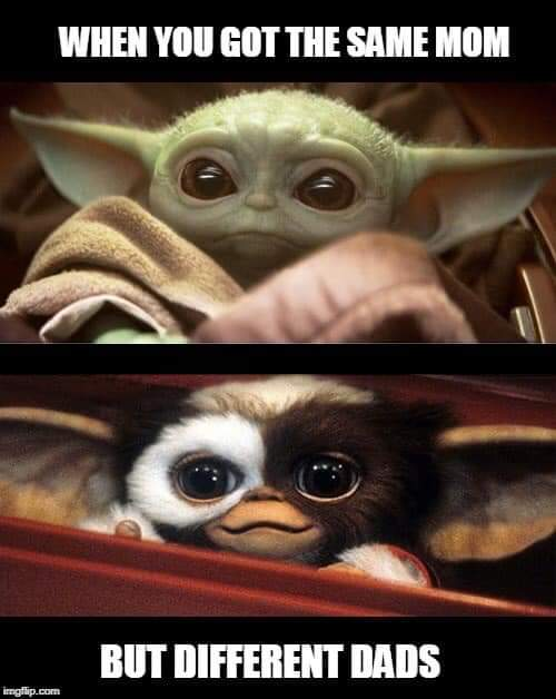 These Adorable Memes Prove That Baby Yoda Is The Cutest Thing You Ve Ever Laid Eyes Upon Geekspin