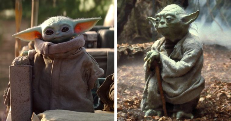Is Baby Yoda related to the legendary Star Wars character Yoda? 11
