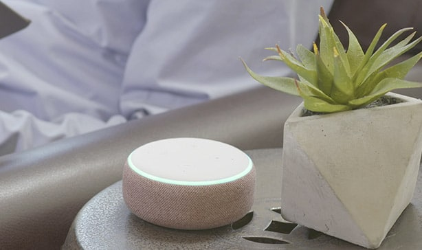 Amazon continues to dominate Google in the smart speaker market 12