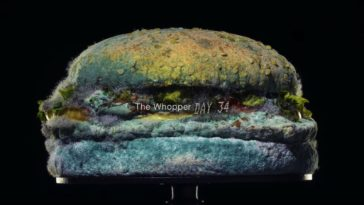 Moldy Whopper commercial could make you lose your lunch just from watching it 19