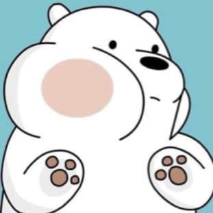 Ice Bear 80