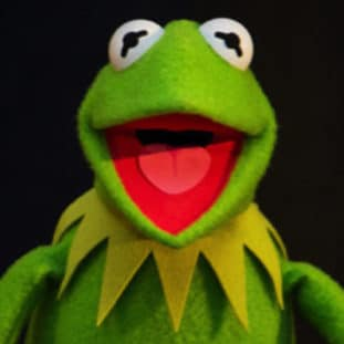 Kermit the Frog 31