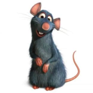 Remy of Ratatouille 40