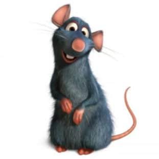 Remy of Ratatouille 37