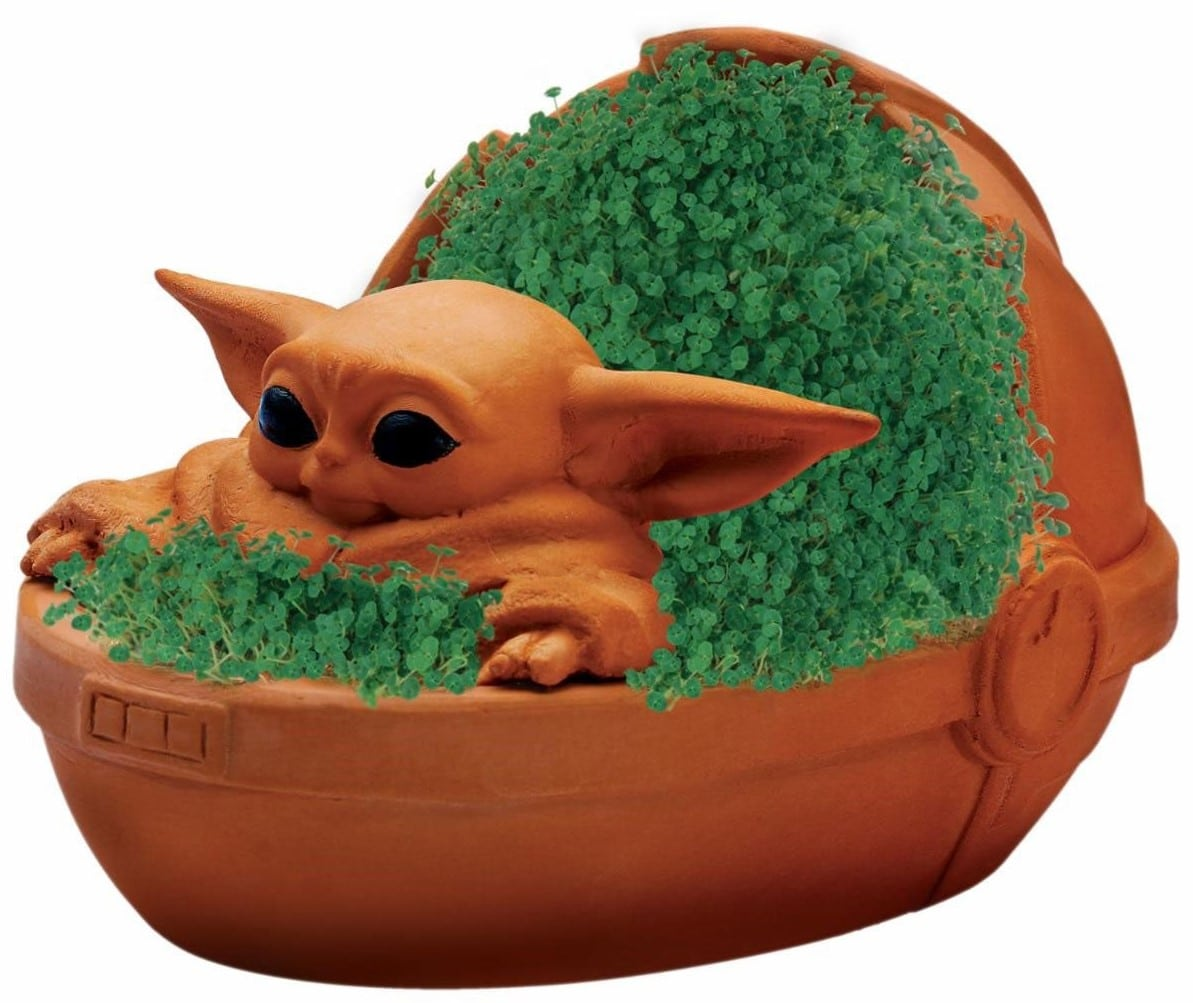 Baby Yoda is now a Chia Pet 15
