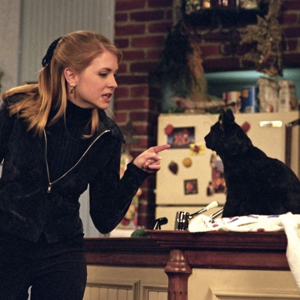 What is the name of Sabrina The Teenage Witch's cat? 33