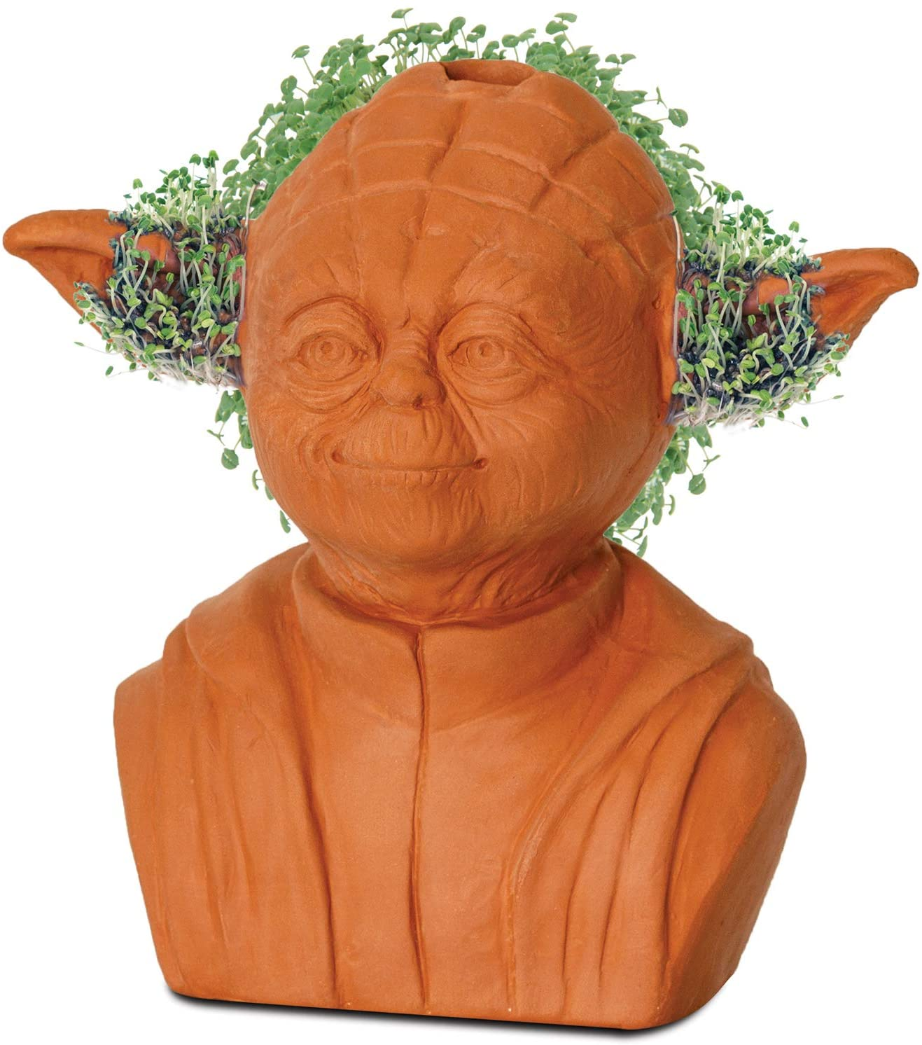 Baby Yoda is now a Chia Pet 17