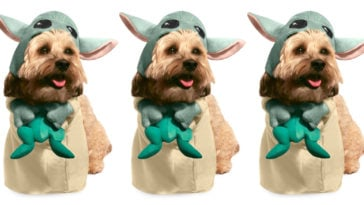 Disney's Baby Yoda pet costume will turn your dog into a Mandalorian foundling 17