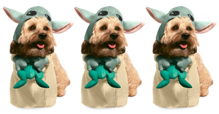 Disney's Baby Yoda pet costume will turn your dog into a Mandalorian foundling 20