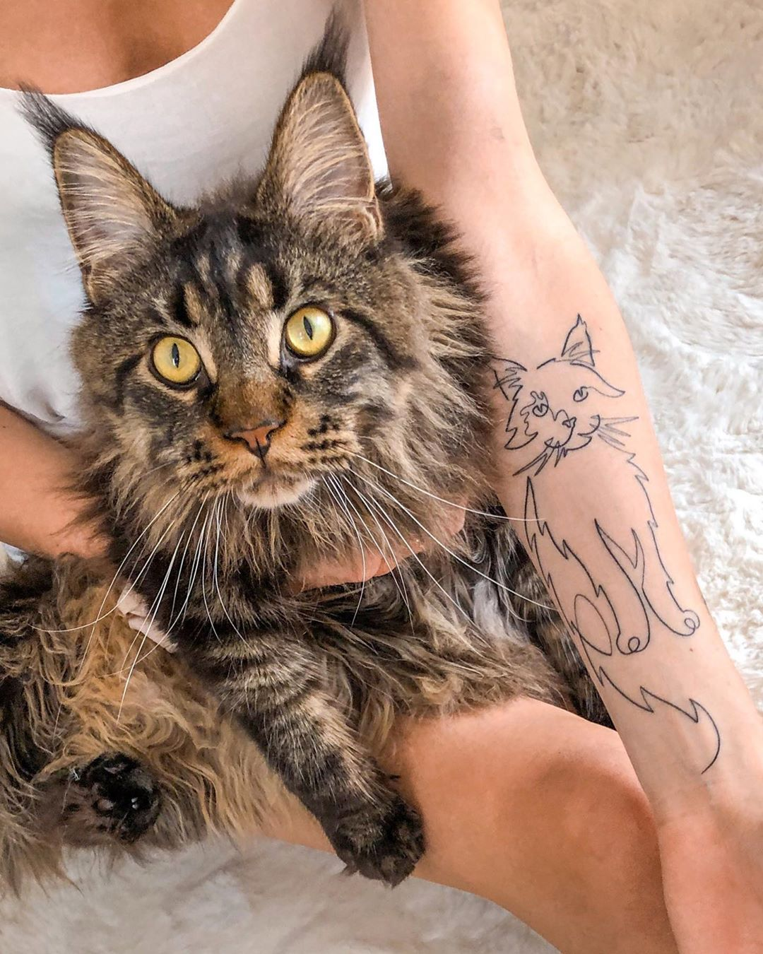 The cutest cat tattoos you'll ever see 16