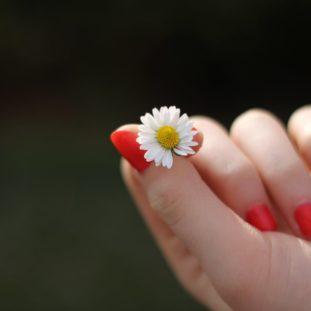 Orange Nails 65