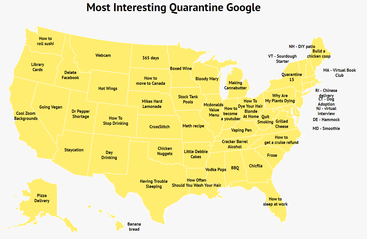 What each state is googling the most during the pandemic 16