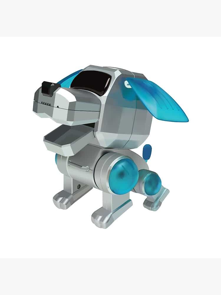 Can you identify this toy? 27