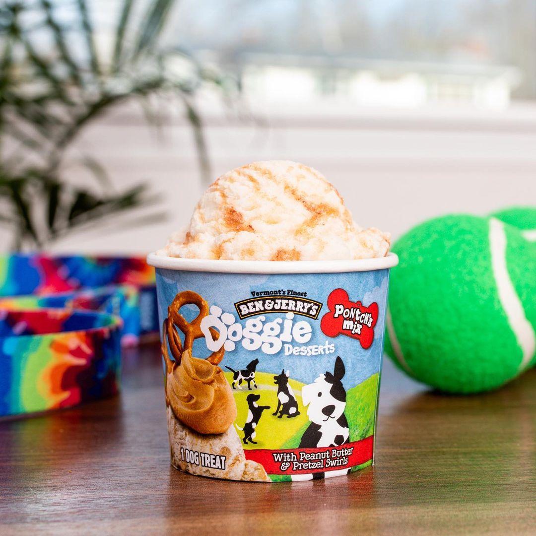 Ben & Jerry's Doggie Desserts - Pontch's Mix