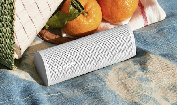 Sonos Roam is the company's most affordable and portable speaker yet 17