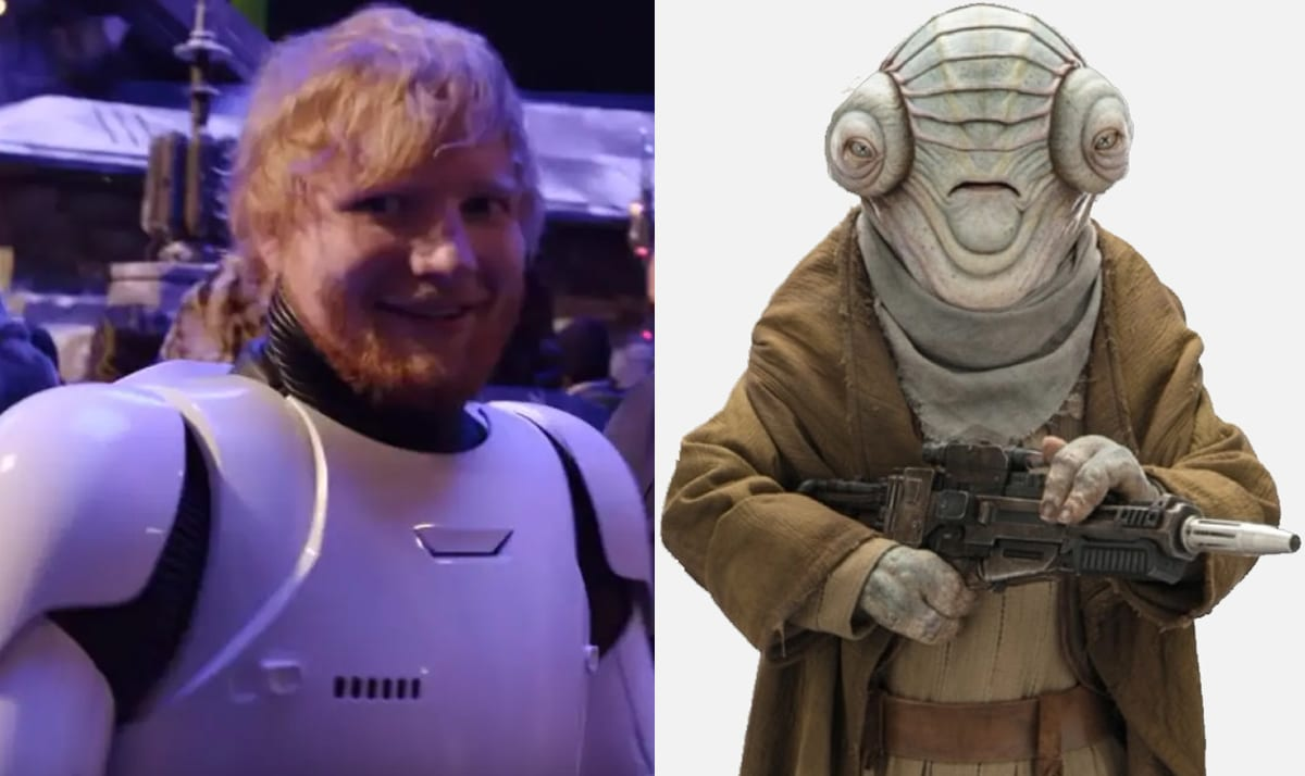 29 Celebrities you did not know starred in Star Wars 24