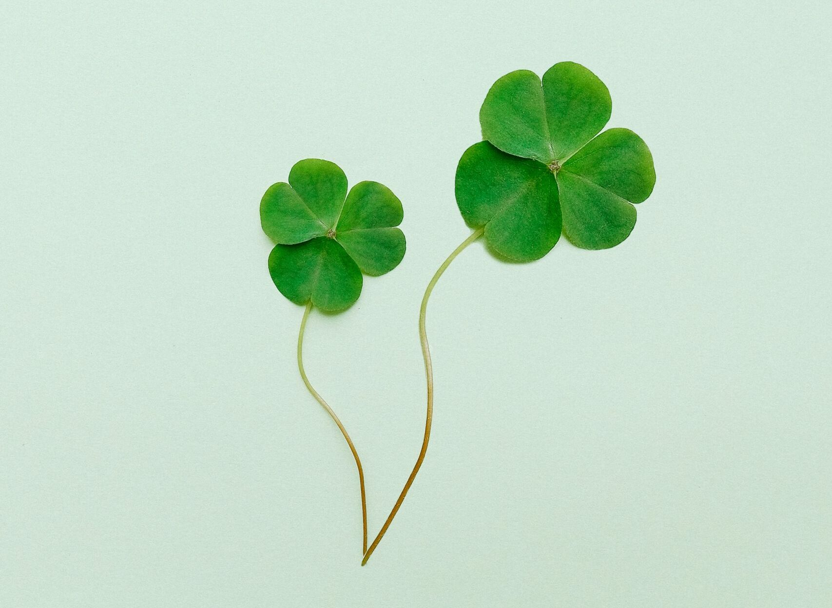 The world's strangest superstitions 44