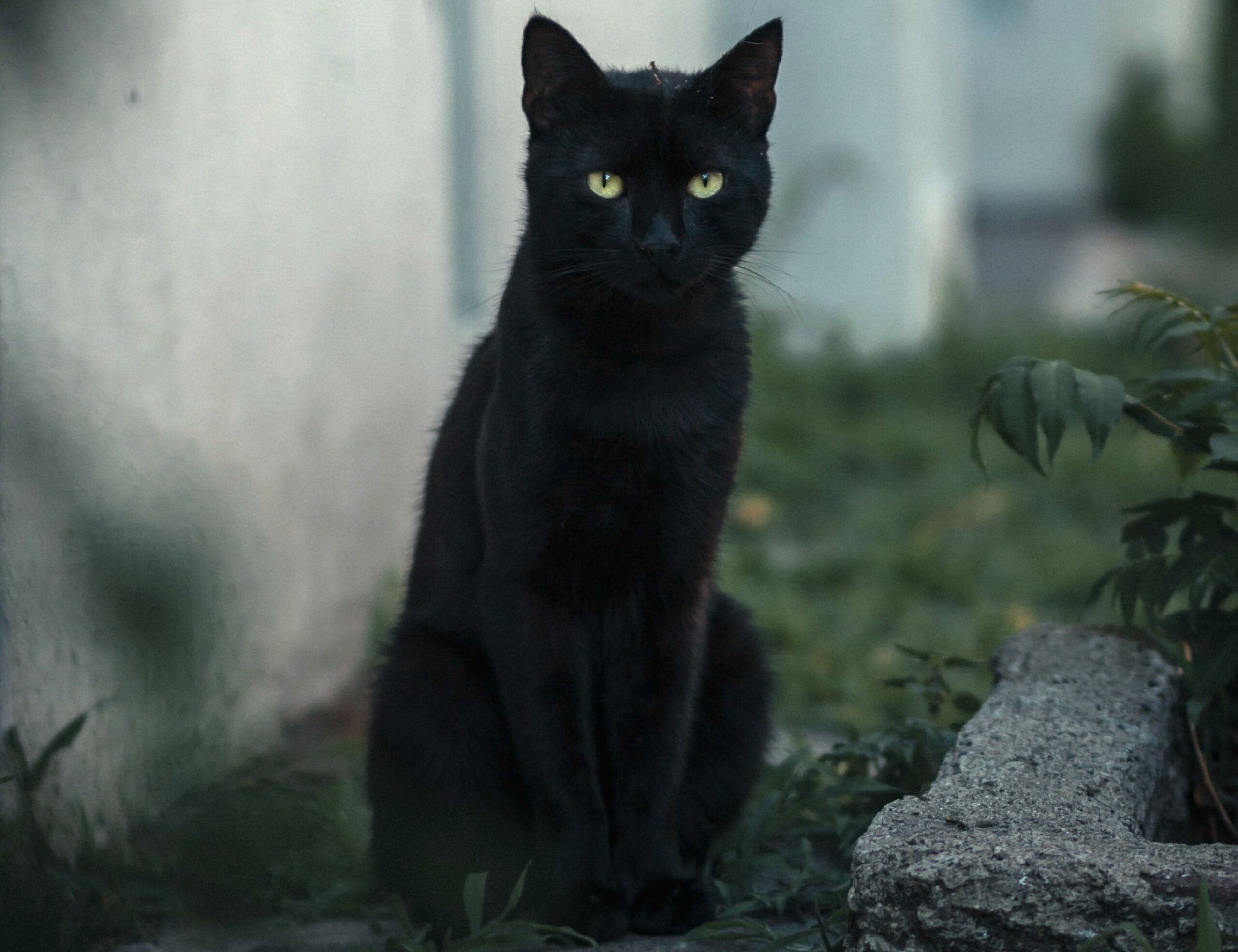 Strangest superstitions