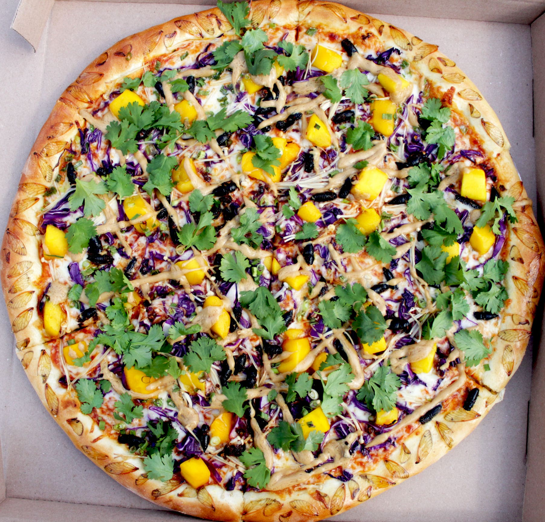 A restaurant made a cicada pizza and taste-testers liked it 15