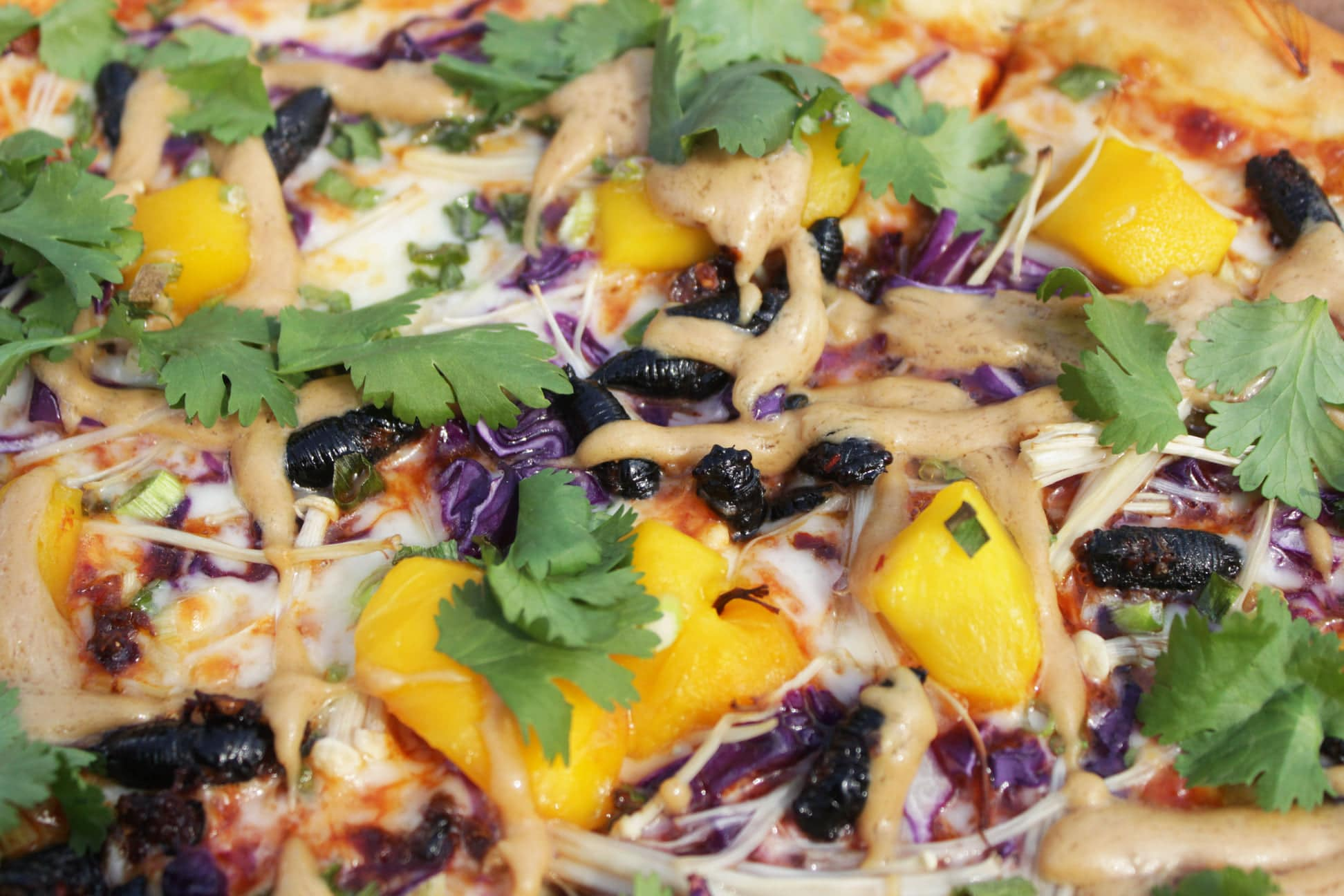 A restaurant made a cicada pizza and taste-testers liked it 16
