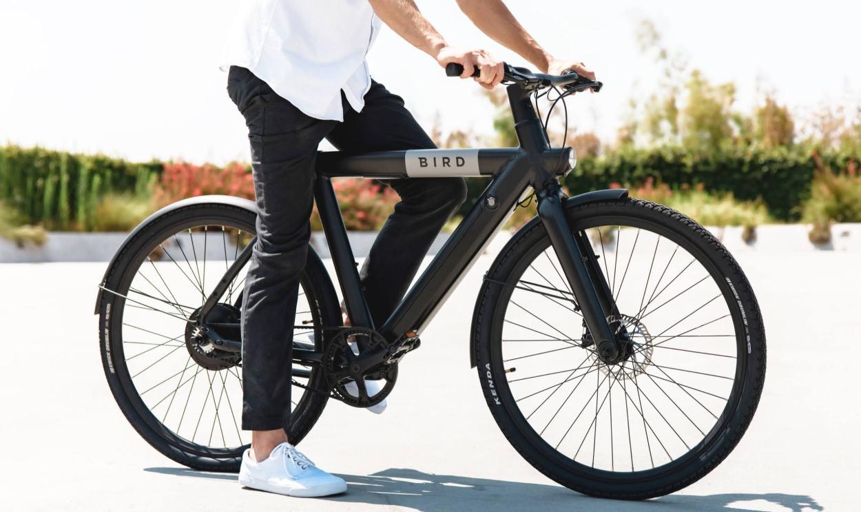 Electric Bird Bike