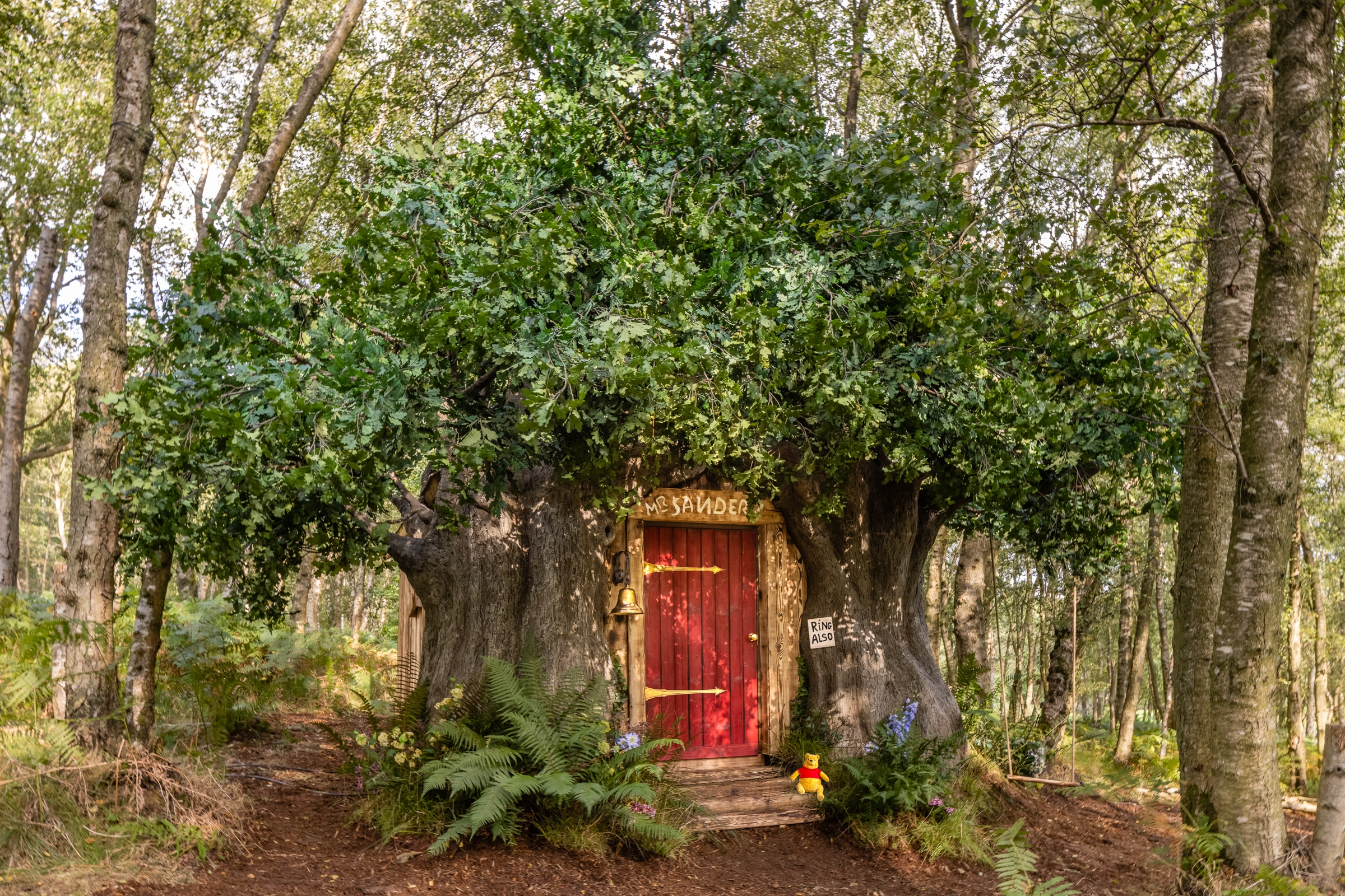 Airbnb is renting out a Winnie the Pooh house 17